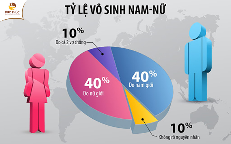 Tỷ lệ vô sinh ở nam giới và nữ giới là tương đương nhau