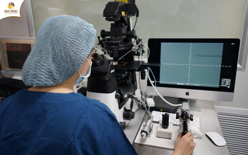 Phương pháp thụ tinh trong ống nghiệm (IVF)